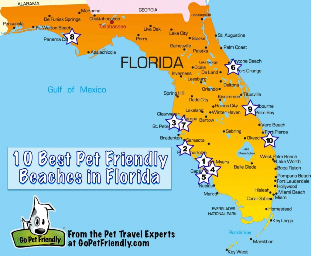 10 Of The Best Pet Friendly Beaches In Florida | Gopetfriendly - Map Of Florida Cities And Beaches