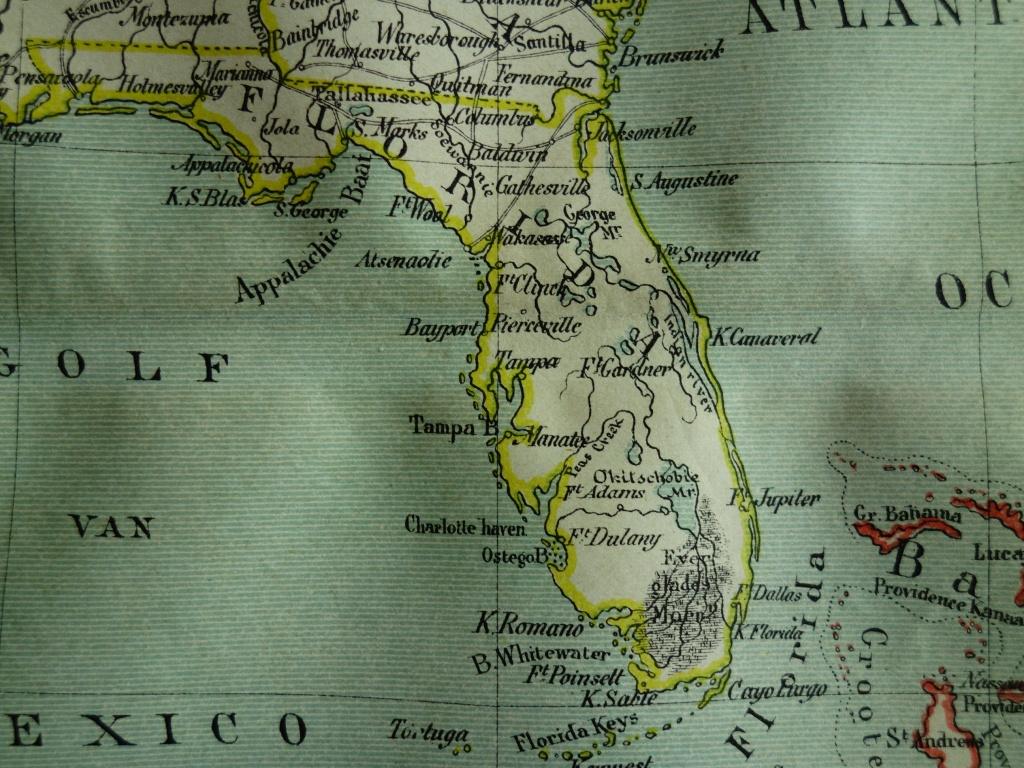 1882 Antique Map Of Florida And Cuba Original Old Dutch Print | Etsy - Vintage Florida Maps For Sale
