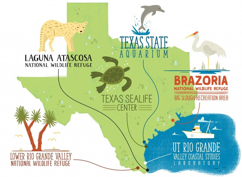 5 Texas Cities Where You Can Discover Your Inner Science Geek - Texas State Aquarium Map
