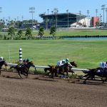 After Horse Racing Stops At Los Alamitos, What Happens To The 170   Horse Race Tracks In California Map