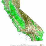 California Contour Map   Online Map Of California