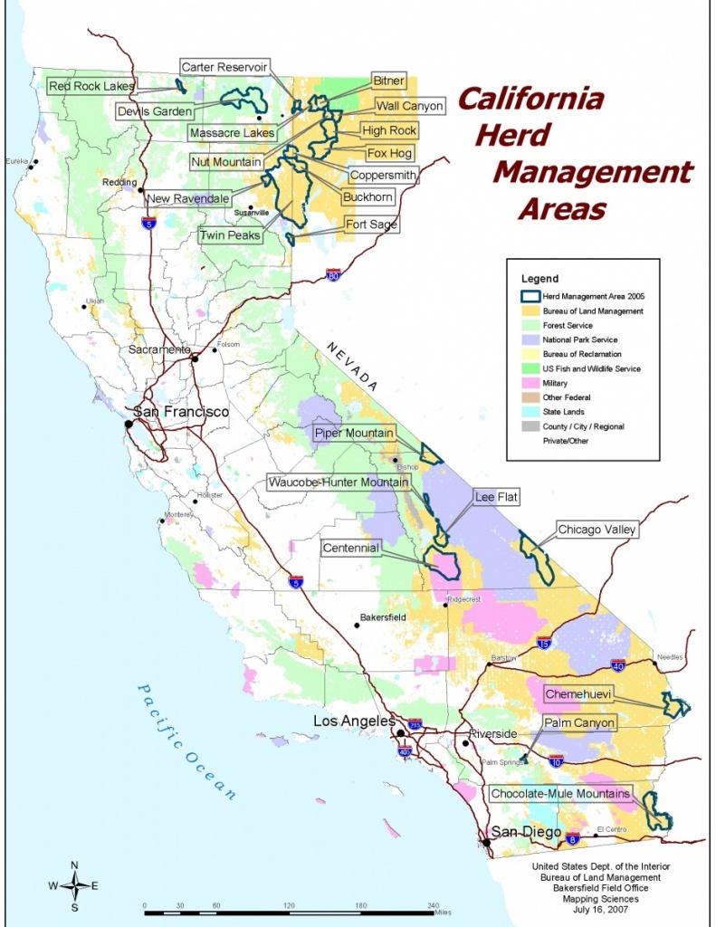 California - Herd Management Areas | Bureau Of Land Management - California Blm Camping Map