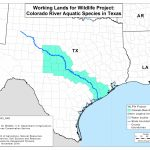 Colorado River Mussels Project | Nrcs   Texas Creeks And Rivers Map