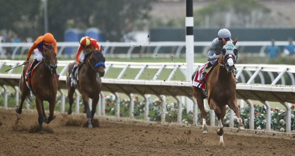 Del Mar Races See New Costs And Declining Revenues | Kpbs - Horse Race Tracks In California Map