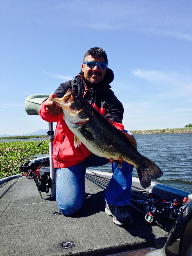 Delta Fishing Report | Bullfrog Marina - California Delta Bass Fishing Map