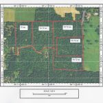 East Texas Land For Sale   Texas Land For Sale Map