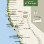 Few Life Experiences Match That Of Standing In A Redwood Grove. Help   Redwood Forest California Map