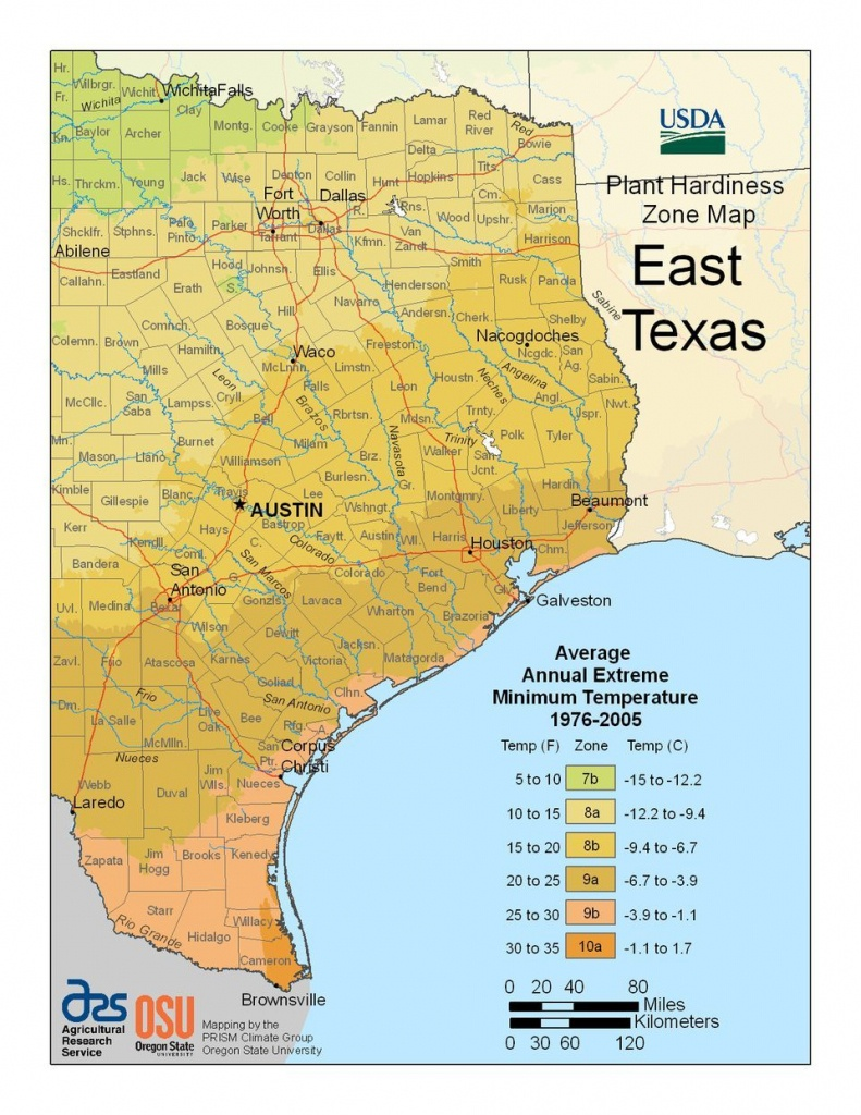Find Your Usda Zone With These State Maps | Gardening | Texas - Usda Zone Map Texas