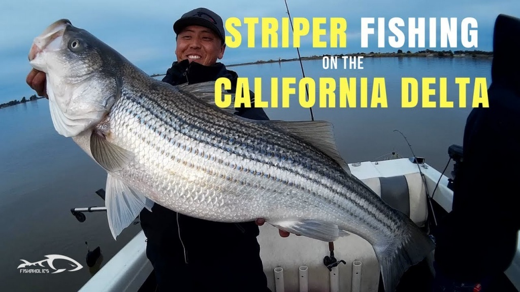 Fishing Report: California Delta March 18, 2018 | Fishaholics - California Delta Bass Fishing Map