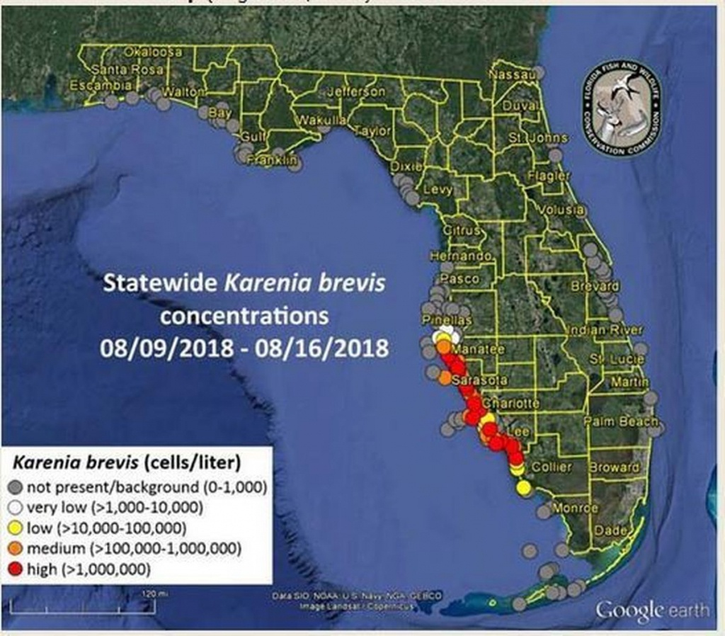 Florida Red Tide Update:toxic Organisms Span 130-Mile Stretch; 12 - Current Red Tide Map Florida