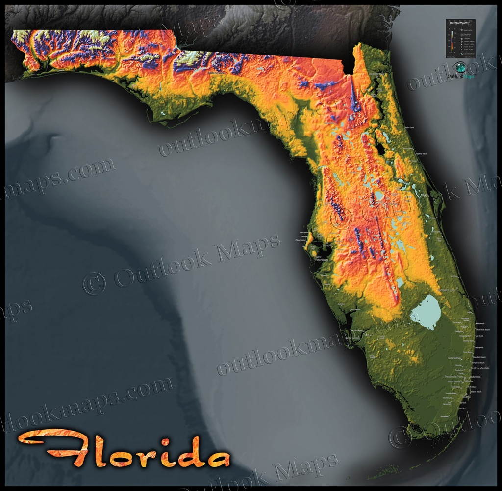 Florida Topography Map | Colorful Natural Physical Landscape - Florida Elevation Map By Address