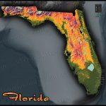 Florida Topography Map | Colorful Natural Physical Landscape   Florida Land Elevation Map