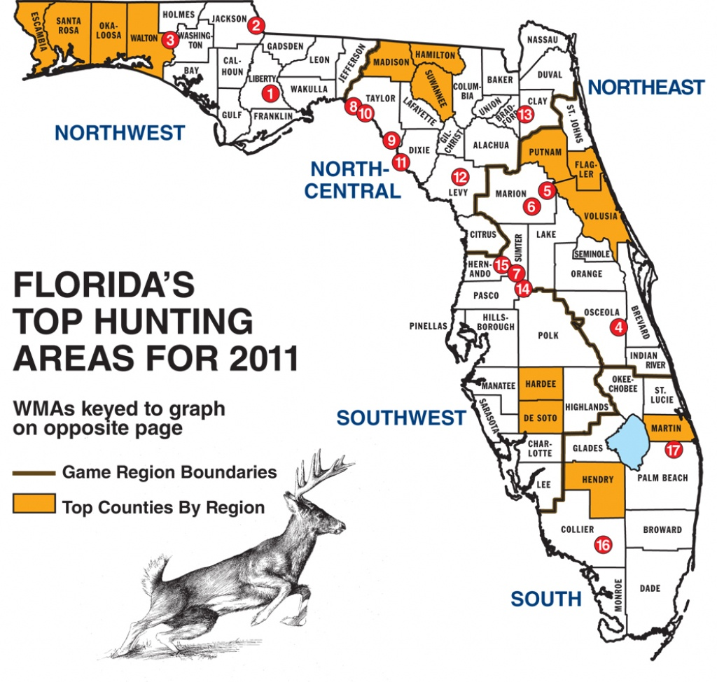 Florida Whitetail Experience - Huntingnet Forums - Florida Public Hunting Map