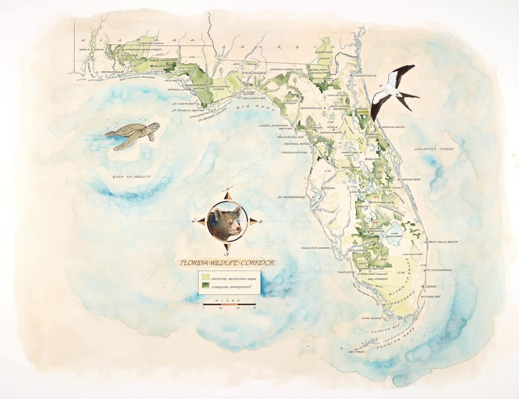 Florida Wildlife Corridor Expedition Watercolor Map Print - Where Is Watercolor Florida On A Map