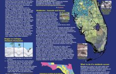 Sinkhole Map Hernando County Florida