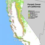 Forest Cover Map Of California [871 × 1232] : Mapporn   Redwood Forest California Map