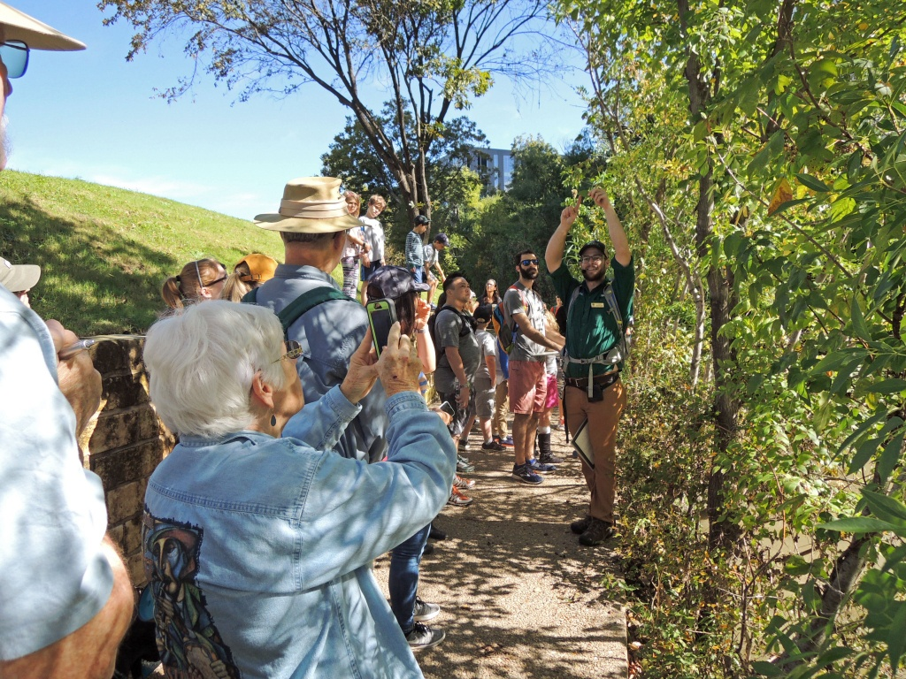 Free Tree Id And Tree Mapping Workshop! - Austin Econetwork - Texas Tree Map