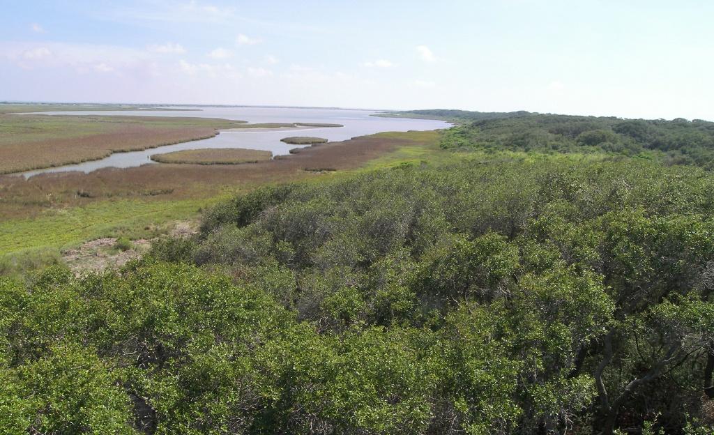 Great Texas Coastal Birding Trail - Wikipedia - Texas Birding Trail Maps