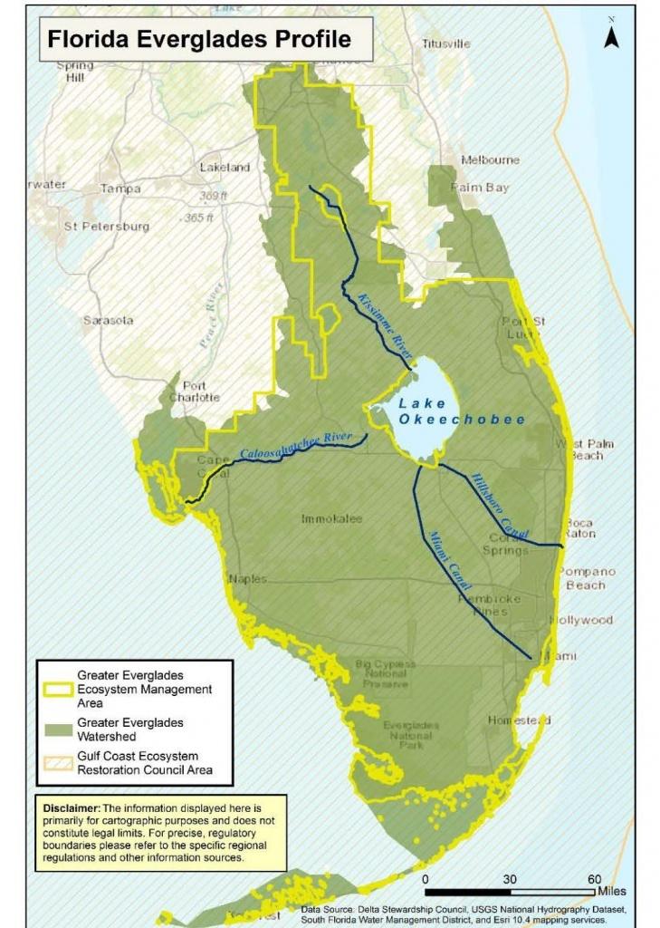 Greater Everglades Ecosystem ~ Maven's Notebook | Water News - Florida Snake Problem Map
