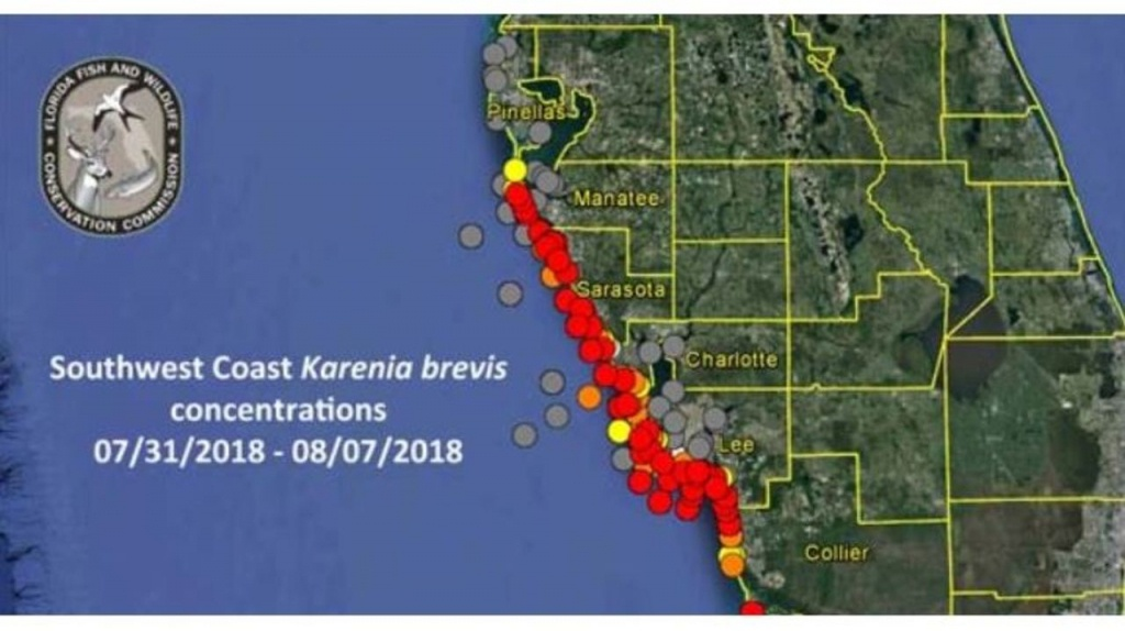 How To Check For Red Tide Before Going To The Beach - Current Red Tide Map Florida