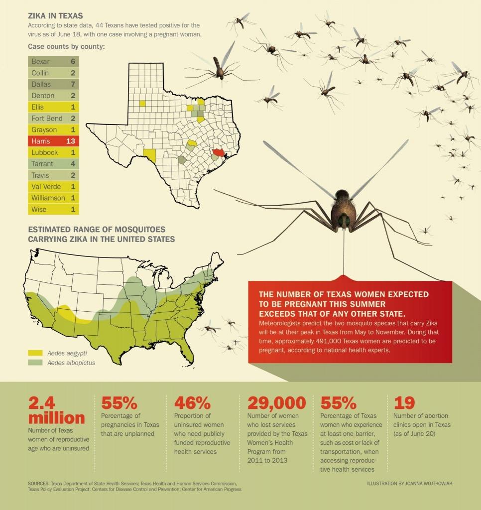 How Zika Virus Could Slip Through Texas' Health Safety Net - Texas Zika Map