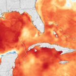 Hurricane Michael Heads For Florida   Florida Water Temperature Map