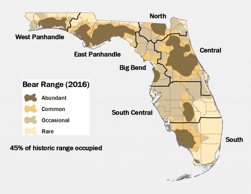 Lesson Ten: Oh Where, Oh Where Is The Florida Black Bear? - Black - Florida Snake Problem Map