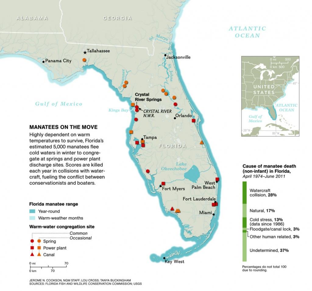 Manatee Invasion! – National Geographic Education Blog - Florida Hot Springs Map