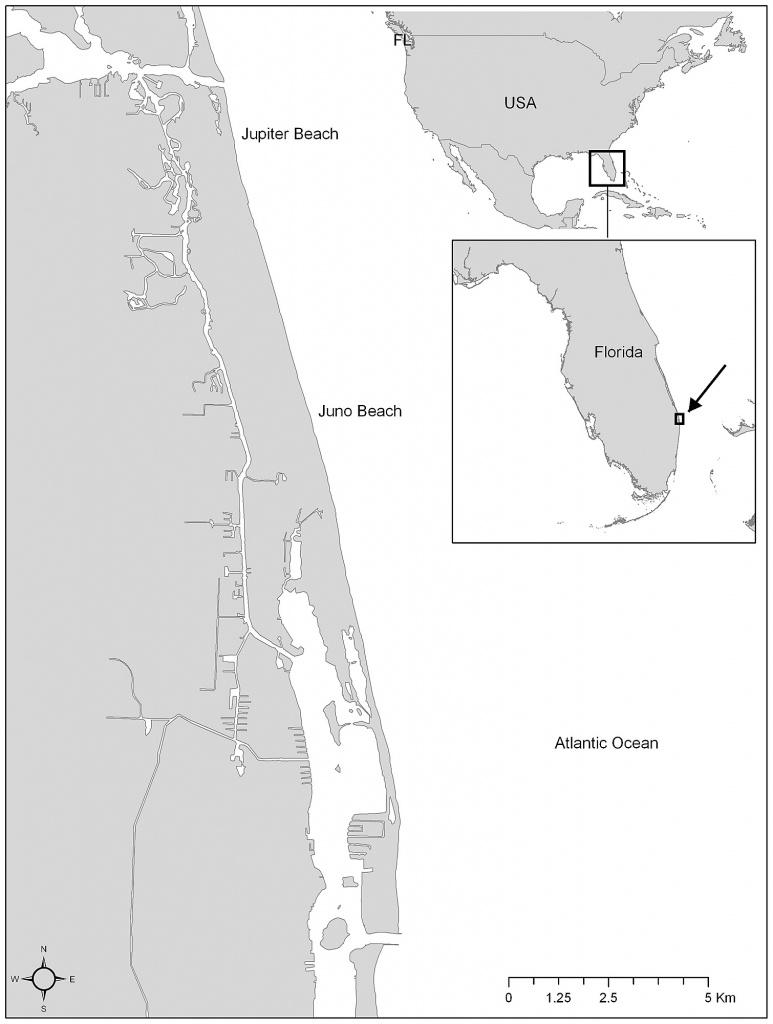 Map Of The Nesting Beach Extending Across Juno Beach And Jupiter - Juno Beach Florida Map