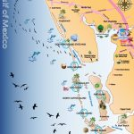 Map Out Your Next Vacation In The Florida Gulf! | Gulf Island Tours   Where Is Punta Gorda Florida On A Map
