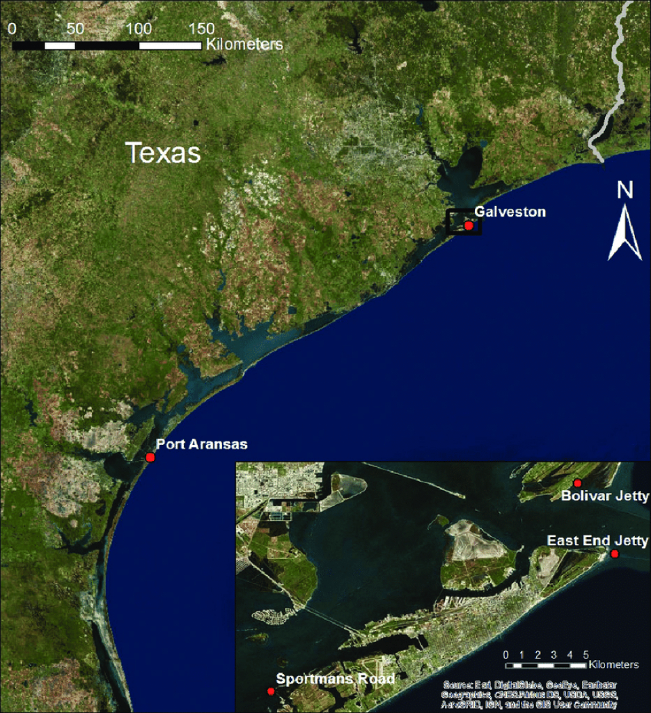 Map Showing The Texas Coast With Port Aransas And Galveston Marked - Map Of Port Aransas Texas Area