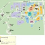 Mayo Clinic Florida Campus   Maplets   Mayo Clinic Jacksonville Florida Map