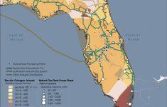 Florida Natural Gas Map