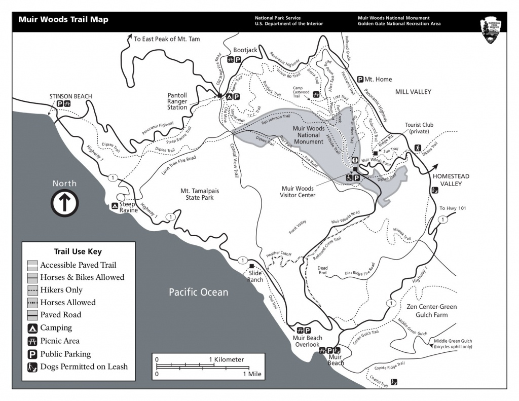 Muir Woods Maps | Npmaps - Just Free Maps, Period. - Muir Woods Map California