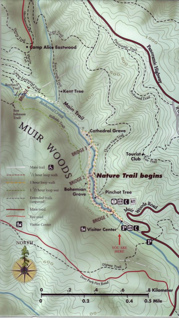 Muir Woods - Muir Woods Map California
