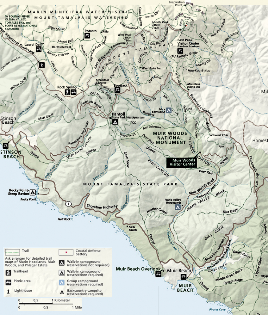 Muir Woods, Stinson Beach, Mt. Tam Hikes - Muir Woods Map California