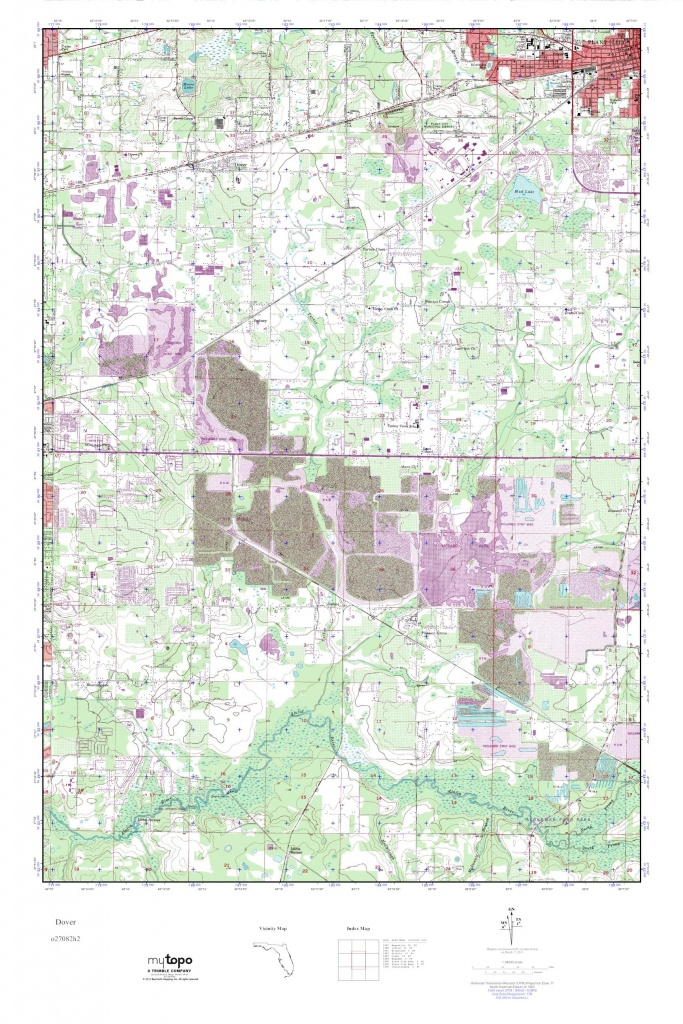 Mytopo Dover, Florida Usgs Quad Topo Map - Dover Florida Map