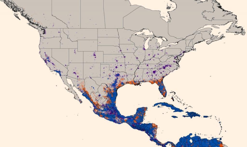 New Map Predicts Spread Of Zika Virus | Medicine | Sci-News - Zika Virus Texas Map
