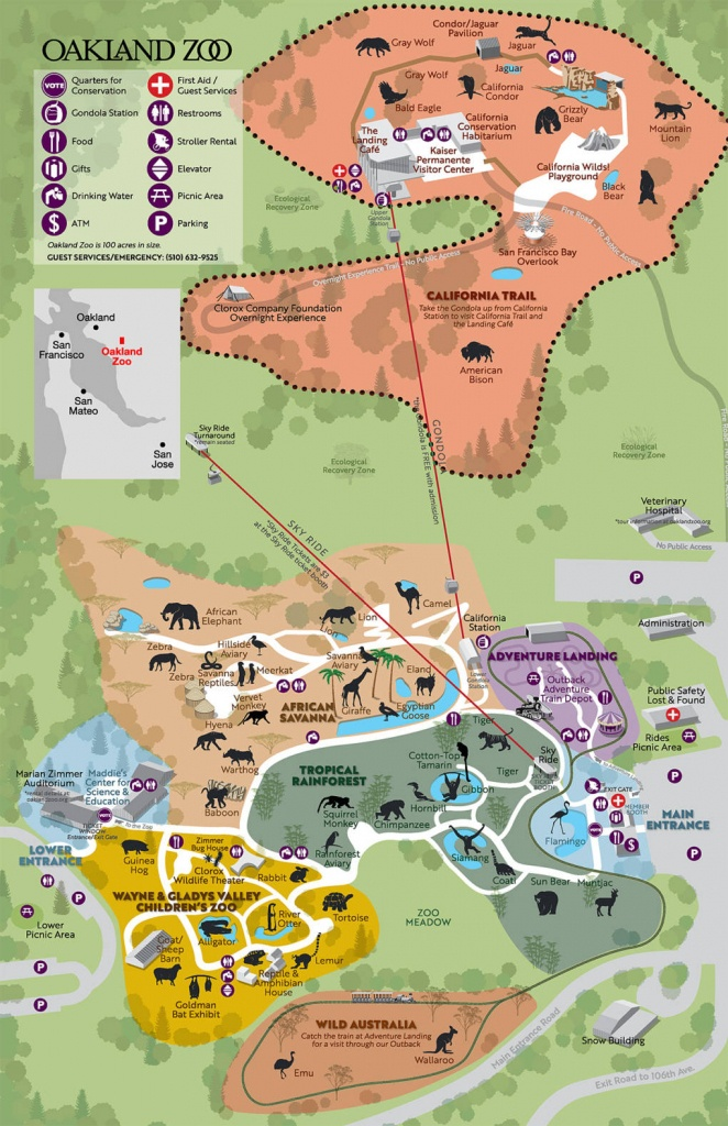 Oakland Zoo Makes Room For Big Predators. But Is It Enough? | Kqed - Oakland Zoo California Trail Map