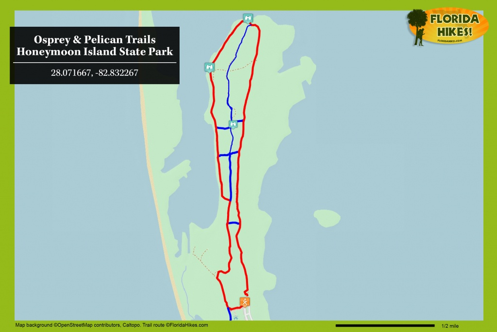 Osprey Trail | Florida Hikes! - Honeymoon Island Florida Map