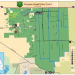 Picayune Strand State Forest / State Forests / Our Forests / Florida   Golden Gate Estates Naples Florida Map