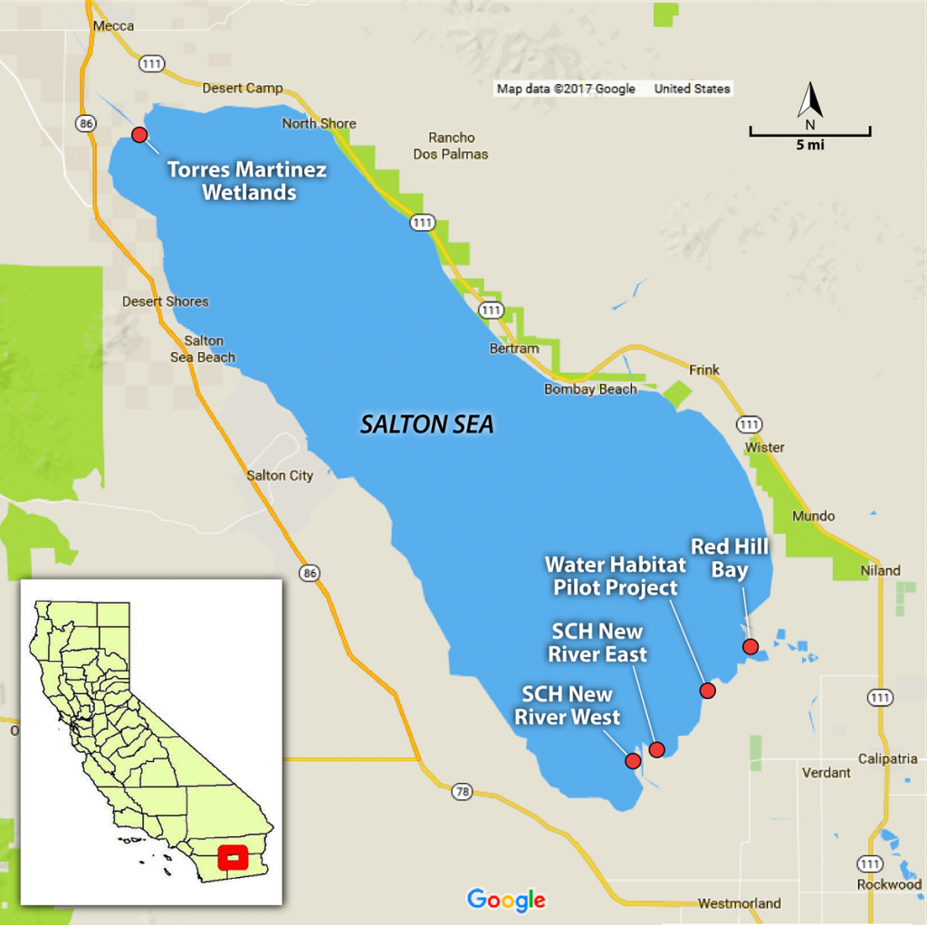 Pinphotoman3 On Salton Sea   Salton Sea, Water Management, Map - Salton Sea California Map