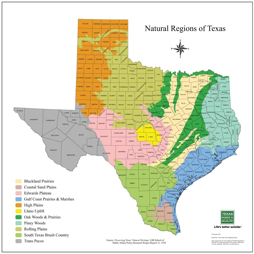Plains Of Texas Map | Business Ideas 2013 - Map Of South Texas Coast