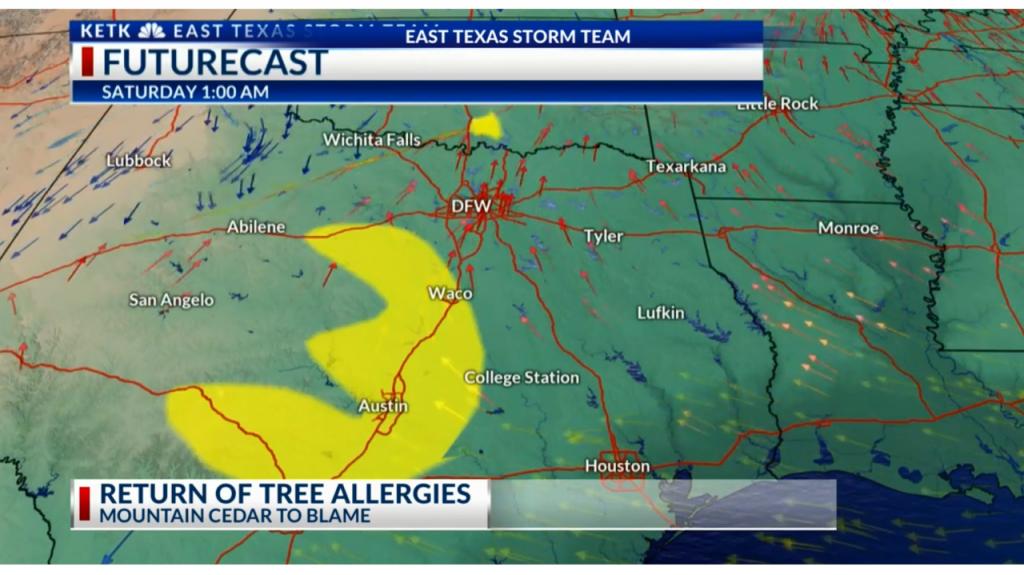 Pollen Making A Comeback In East Texas - Pollen Map Texas