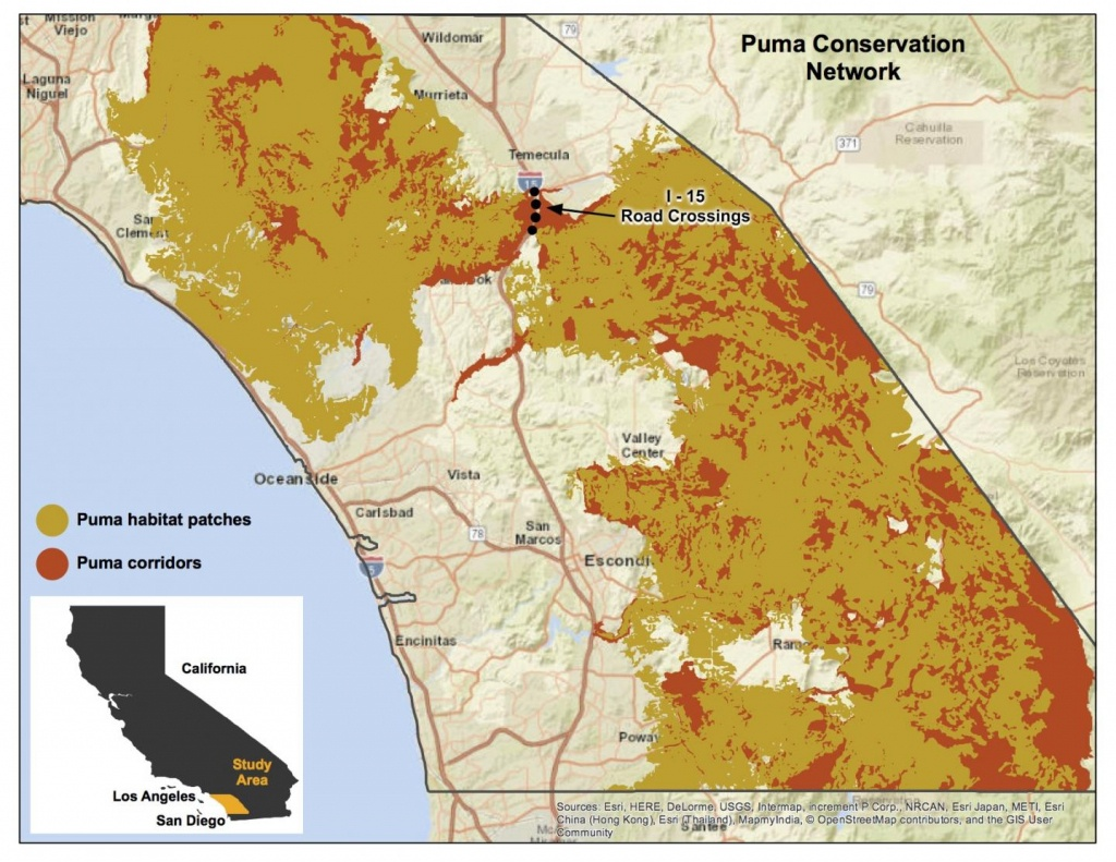 Puma Conservation Area Map [Image]   Eurekalert! Science News - Mountain Lions In California Map