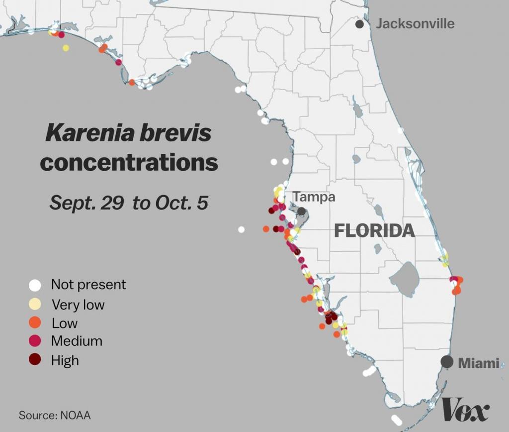 Red Tide: Why Florida's Toxic Algae Bloom Is Killing Fish, Manatees - Florida Beach Bacteria Map 2018