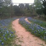 Texas Hill Country Scenic Drives | Hill Country Outdoor Guide   Driving Map Of Texas Hill Country