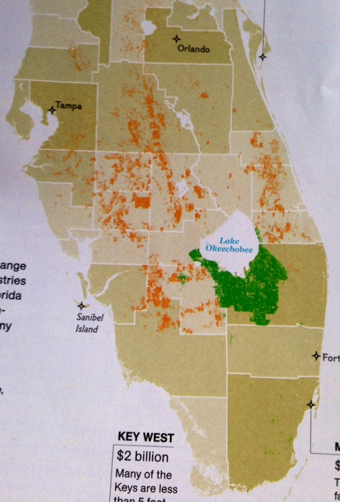 The Future Of Oranges, Sugarcane, And Drainage Gates, National - Where Are Oranges Grown In Florida Map