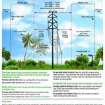 Transmission Right Of Way Use Guidelines   Duke Energy Transmission Lines Map Florida