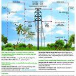 Transmission Right Of Way Use Guidelines   Duke Energy Transmission Lines Map Florida